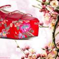 Asia Schuhe - Top 8